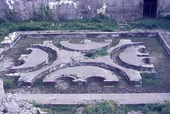 1982 04 03 Lazio - Roma - Fori Imperiali_024 (william.ferrari1956) Tags: foriimperiali lazio roma