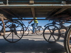 Cuba : good way to get around on a nice day... (TrevTheBrit) Tags: visit travel cuba cyclist low wheels shadows