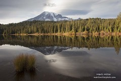 151016-41e (Marli Bryant Miller) Tags: mountrainier washington geology stratovolcano cascades mountains pacificnorthwest water lake reflection couds calm glaciers alpine andesite volcanic nationalpark usa