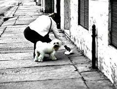 Pirotti_Andrea_09