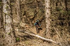 ews 15 (phunkt.com) Tags: world mountain love bike race scotland keith valentine glen trail peebles dh mtb series xc tress tweed enduro glentress innerleithen 2015 ews phunkt phunktcom tweedlove