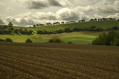 Ploughed (Stuart.67) Tags: england sunlight tree green field clouds landscape countryside nikon somerset hills ploughed naturethroughthelens nikond800