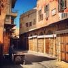 صباح بلادنا الحلوة 😊 Good morning and happy #Friday from beautiful #Saida in #Lebanon. #iphone6 #iphoneonly #wanderlust #visitlebanon #travel #traveler #travelblog #vscocam #vsco #streetlife