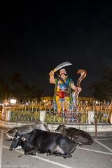 Mahishasura Statue at Chamundi Hills (LS-Pictures) Tags: statue hills chamundi mahishasura