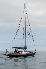 Classic Channel Regatta arriving in Paimpol  Tuesday 14th July (Matchman Devon) Tags: classic race regatta channel paimpol sheevra