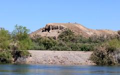 IMG_0155.jpg (DrPKHouse) Tags: arizona unitedstates loco bullhead ehrenberg