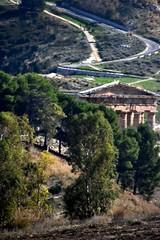 DSC_10285 (jhk&alk) Tags: italy italia sicily sicilia fermatasegesta greektemple templo areaarcheologicasegesta