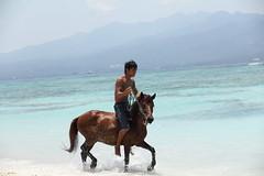 _MG_9841 (zet11) Tags: eta west nusa tenggara indonesia gilihorses beac beach boys gili
