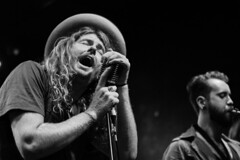 LIVE: Red Wine Roses @ Leadbelly, Sydney, 10th Dec