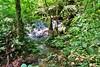IMG_3622 (JoStof) Tags: indonesia bali munduk hike jungle indonesië idn
