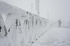 Through the snow (Igor Voller) Tags: japan tohoku yamagata zao mountain observationdeck bannister person wind snow cold pillar december outdoor lines япония тохоку ямагата дзао человек плохаявидимость холод снег ветер зима смотроваяплощадка перила 日本 東北 冬 雪 風 人