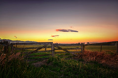 Farm Baked (Kevin_Jeffries) Tags: colour new nz newzealand jeffries hills rural countryside nikon d7100 nikkor south nature summer green light newyearsday outdoor landscape field sunset sky kevinjeffries fence gate gateway grass farm farmland scenery digital dusk flickrsbest