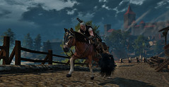 Man on a mission (simonmino) Tags: witcher3 novigrad roach horse