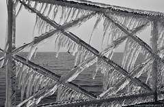 Barrière de Glace (Franck Baduel) Tags: léman arctique polaire glace tempète yvoire evian