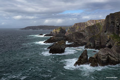 Mizen Head (Anne.Berger) Tags: mizenhead ireland irland wildatlanticway atlantic atlantik steilküste kliff cliff wellen waves