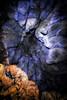 Wormhole (MSPhotography-Art) Tags: albtrauf höhle deutschland cave winter grabenstetten nature felsen germany swabianalb schwäbischealb eis alb natur rocks badurach badenwürttemberg de