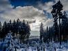 Winter wonderland (jonasschmidt1909) Tags: sun clouds winter cold trees sauerland germany wonderland olympus omd em10