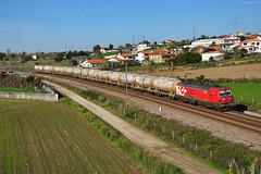 Cemento. Salreu. Portugal (rapidoelectro) Tags: cp cpcarga medlog medway linha norte linhadonorte salreu souselas ramalleandrocimpor cemento cement cimento 4716 siemens