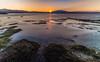 Le froid, le vent, le soleil (Ji_ueli) Tags: canonphotography catalogne catalunya landscape sunset seashore seaside southoffrance dawn paysage lake daybreak evening heuredorée photooftheday lights goldenhour