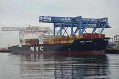 MSC Japan (jelpics) Tags: cargoship commercialship conleyterminal cranes merchantship msc mscjapan boat boston bostonharbor bostonma harbor massachusetts ocean port sea ship vessel massport
