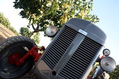 IMG_0389 (ACATCT) Tags: old españa tractor spain traktor agosto toledo antiguo massey pistacho tembleque barreiros 2015 bustards perdices liebres avutardas ff30ds r350s