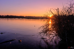 Sonnenuntergang am Schwenninger Moos