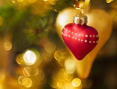 Last Christmas - Tribute to George Michael (Karsten Gieselmann) Tags: apertureblending bokeh christmas dof domiplan50mmf28 em5markii gold herz kunstlicht macromondays microfourthirds olympus rot schärfentiefe vintagelens weihnachten xmas artificiallight golden kgiesel m43 mft red