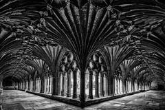 Kreuzgang der Kathedrale von Canterbury (antonkimpfbeck) Tags: msastor2016 canterbury cathedral kreuzgang kathedrale monochrome blackandwhite bw fineart fuji xe2 xf1024 architektur