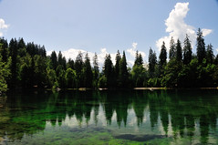 Lac Vert de Passy (OlivierGa) Tags: hautesavoie passy lacvert servoz libellule insecte