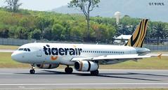 9V-TAT AIRBUS A320-232 (douglasbuick) Tags: aircraft airbus a320232 9vtat tigerair malayasian jet plane taxiing airport phuket aviation flickr airliner airlines airways nikon d40 thailand