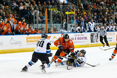 "Missouri Mavericks vs. Wichita Thunder, February 4, 2017, Silverstein Eye Centers Arena, Independence, Missouri.  Photo: John Howe / Howe Creative Photography • <a style=""font-size:0.8em;"" href=""http://www.flickr.com/photos/134016632@N02/32599599632/"" target=""_blank"">View on Flickr</a>"