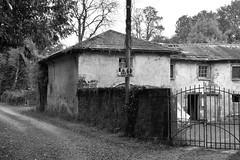100915-772Fx (kzzzkc) Tags: nikon d7100 ireland clonbrock castle bw building 19thcentury stable stone wall gravel lane road sign pole gate
