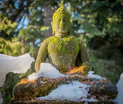 Buddha Emerging From the Snow - Whistler (stevecarney) Tags: outdoors sculpture buddha snow spring art landscape bc canada vancouver winer vegetation whistler pow awakening gaining pure happiness freedom from misery religion spirituality serenity serene touching earth plants moss golden rural countryside nature leica q 28mm