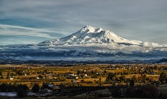 volcanic neighbor... (Alvin Harp) Tags: february 2016 ancientvolcano volcano mountshasta northerncalifornia weed snowcaps ranching farms sonyilce7rm2 fe24240mm alvinharp