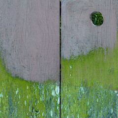 (msdonnalee) Tags: woodenfence knothole fence mossyfence abstractreality minimalism