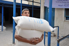Palestine Winterization Program