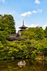 IMG_6252 - Kyoto (Alessandro Grussu) Tags: city japan canon temple pond kyoto asia buddhism stadt 5d teich giappone tempel citt laghetto tempio buddhismus buddismo