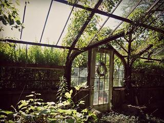 The Greenhouse Entrance : Abandoned