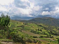 Campo florestano (@omarsilva_photos) Tags: naturaleza mountain verde landscape américa colombia ngc natur paisaje latinoamerica campo prado colina montaña boyaca agricultura airelibre ladera suramérica omarsilvaphotos florestá