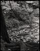 Flat Laurel Creek #1 (greyhills2) Tags: scottstallings nc chamonix c45n1 ilford nikkor nikkorw 210mm f56 d100 delta100 iso50 xtol11 kodak largeformat screen1045ai