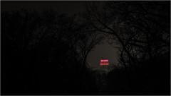 Illuminated (delpax) Tags: delpax holgerniemann fuji fujinon xt1 290 potsdam nicolai kirche