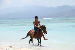 _MG_9842 (zet11) Tags: eta west nusa tenggara indonesia gilihorses beac beach boys gili