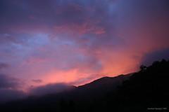 TOISAN  SITO (joseisaiasibarra) Tags: places ecuador loscedros otherpeoples