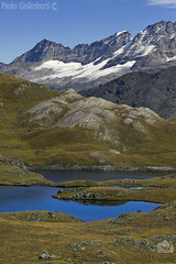 laghi Tre Becchi e massiccio del Gran Paradiso. Tre Becchi lakes and the massif of  the Gran Paradiso (paolo.gislimberti) Tags: paesaggi landscapes mountains montagne alpi alps acqueferme stillwaters prateriaalpina alpinegrassland