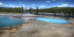 My Kinda Pool (Bill Maksim Photography) Tags: yellowstone national park nationalpark geyser hotspring grand canyon prismatic hike camp trail hotel lodge inn old faithful volcano maksim photography hdr super bear wildlife wildnerness wilderness spring summer winter bison sight seeing