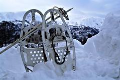 army (KvikneFoto) Tags: norge hedmark kvikne vinter winter snø snow nikon truger snowshoes army militær