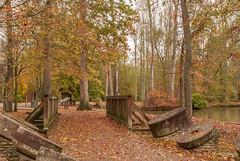 Looking Back (Back Road Photography (Kevin W. Jerrell)) Tags: levijacksonstatepark london kentucky fall backroadphotography autumn scenic scenery nikond60 bridge colorful