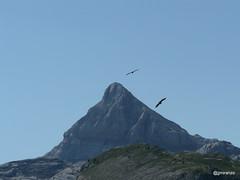 20170123 (josejuanmiranzo) Tags: anie auñamendi pirineus pirineos montaña mountain paisaje landscape foto fotografia photo photography canonista canon canonist 365 365project jjmiranzo