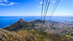 South Africa 2016 (astrabaer8283) Tags: tablemountain capetown southafrica nature mountain westerncape südafrika za