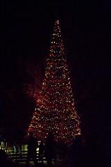 CW342 Longwood Gardens Christmas Lights (listentoreason) Tags: usa night america canon unitedstates pennsylvania scenic favorites places longwoodgardens ef28135mmf3556isusm holidaylighting score30